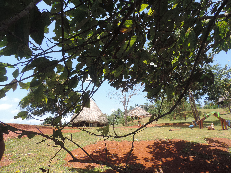 Village des Embera Quera, peuple indigène du Panama BALADE ENTRE NATURE ET PLAGE