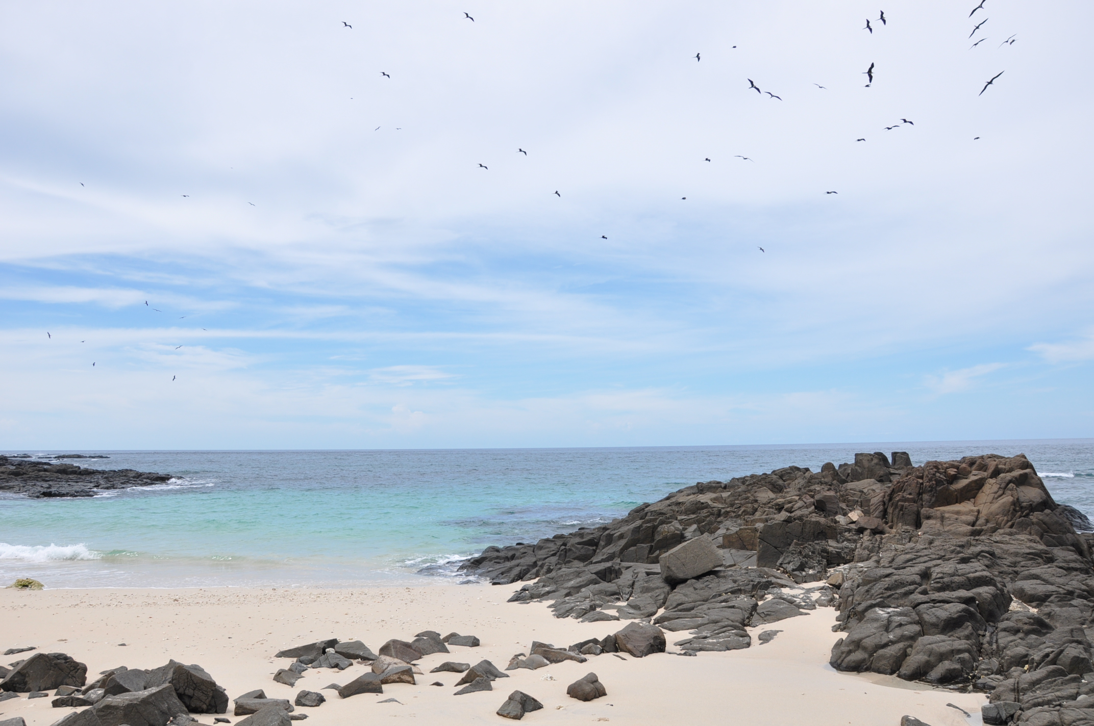 Balade entre nature et plage